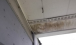 damaged-rotted-porch-ceiling-leak