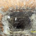 Reasons to Have an Annual Chimney Inspection