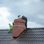 Why Should You Have Your Chimney Inspected Before the Winter?