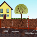 Reasons to Have a Sewer Pipe Inspection Before Buying a Home